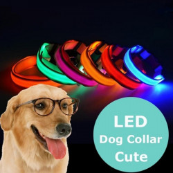 Collar LED Fluorescente Para Mascotas